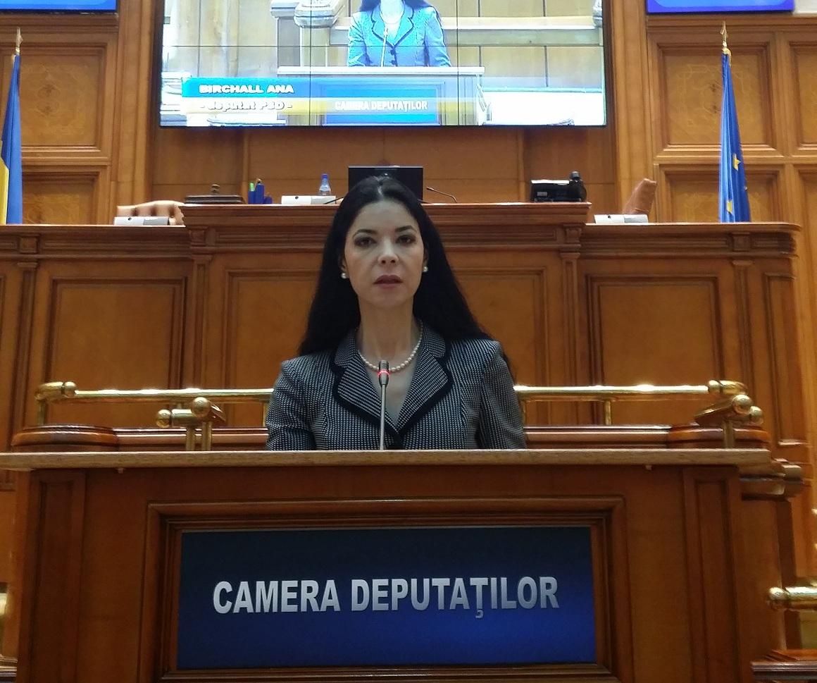Securitatea cibernetică în România şi Europa