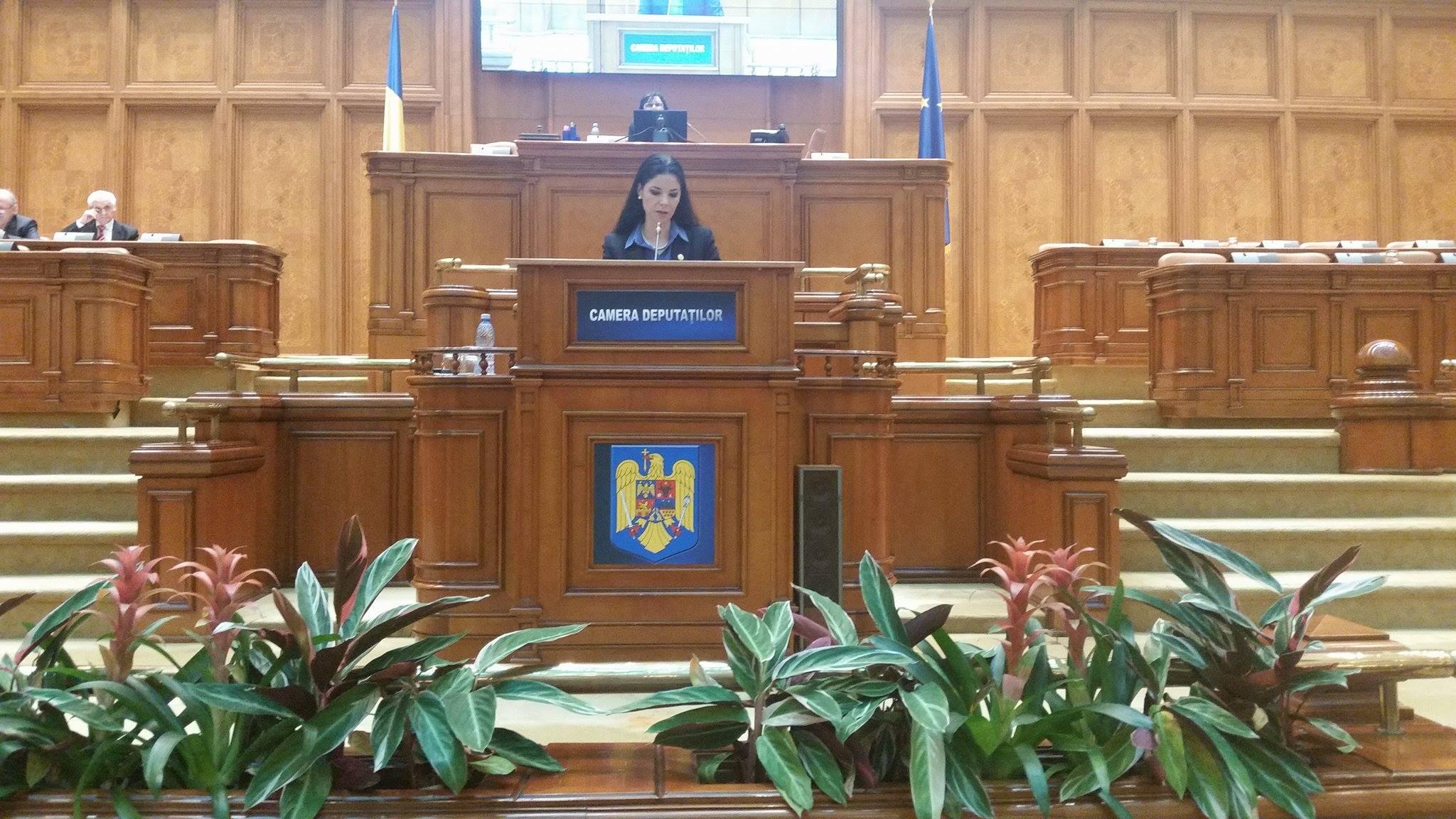 Declaraţie politică referitoare la preşedinţia română a Consiliului UE în primul semestru al anului 2019