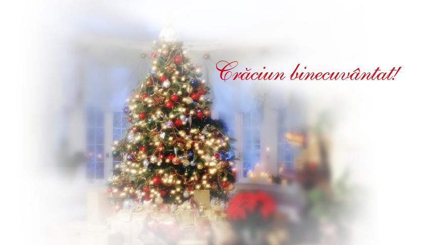 Crăciun binecuvântat!