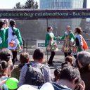17 martie – Saint Patrick's Day