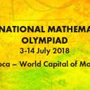 Mult succes elevilor participanți la Olimpiada Internațională de Matematică
