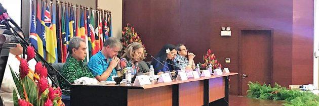Vicepremierul Ana Birchall: Experiența şi expertiza, argumentele principale ale României pentru obținerea locului de membru nepermanent în Consiliul de Securitate al ONU