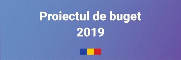 Guvernul României: Proiectul de buget 2019