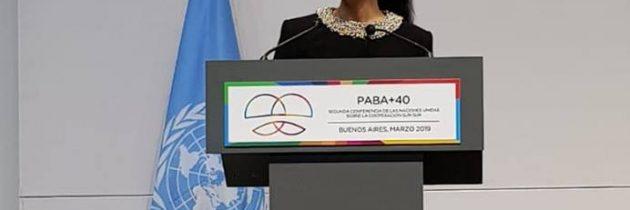 Viceprim-ministrul Ana Birchall, turneu de promovare a candidaturii României pentru mandatul de membru nepermanent în Consiliul de Securitate al ONU