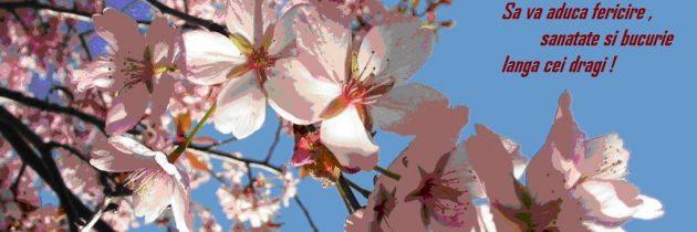 Credincioșii catolici sărbătoresc Duminica Floriilor