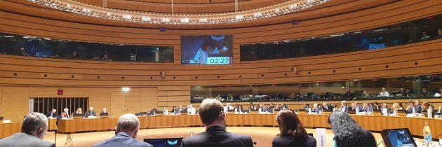 Ana Birchall: Temele dezbătute în cadrul Consiliului JAI prezintă un interes deosebit din perspectiva consolidării spațiului de libertate, securitate și justiție al UE, a continuării discuțiilor inițiate de Președinția română și a creșterii încrederii reciproce între statele membre